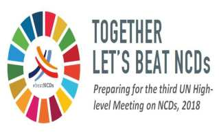 Third United Nations High-level Meeting on NCDs